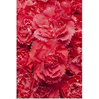 """Red Carnations background"" Poster Print"