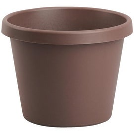"Bloem 8"" Chcolate Poly Pot"