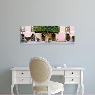 Easy Art Prints Panoramic Images's 'Tree, Posada de las Flores Hotel, Loreto, Baja California Sur, Mexico' Canvas Art