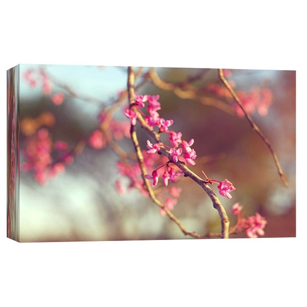 """PTM Images 9-102069 PTM Canvas Collection 8"""" x 10"""" - """"Red Bud 2"""" Giclee Cherry Blossoms Art Print on Canvas"""