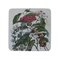 """Pack of 8 Antique Style Botanical Mixed Floral Print Cocktail Drink Coasters 4"""" - Multi"""