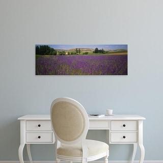 Easy Art Prints Panoramic Images's 'Flowers in a field, Castile, Leon, Spain' Premium Canvas Art