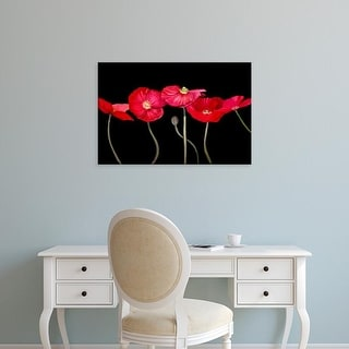 Easy Art Prints Sandra Iafrate's 'Dramatic Poppies' Premium Canvas Art