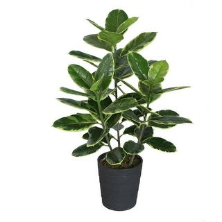 """36.5"""" Potted Green and White Rubber Inspired Plant"""