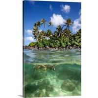 Premium Thick-Wrap Canvas entitled Green Sea Turtle