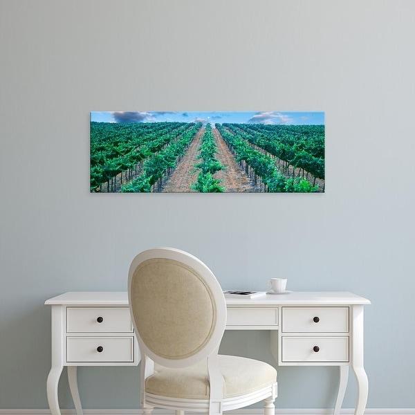 Easy Art Prints Panoramic Images's 'Moonrise over vineyard, Temecula, California, USA' Premium Canvas Art