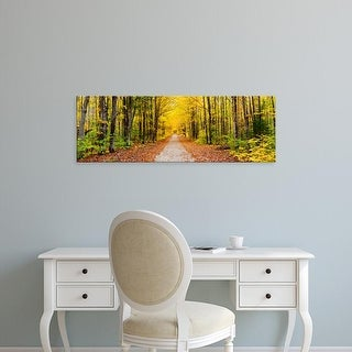 Easy Art Prints Panoramic Image 'Trees, Autumn, Hiawatha National Forest, Upper Peninsula, Michigan' Canvas Art