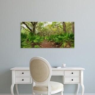 Easy Art Prints Panoramic Image 'Trees in forest, Oscar Scherer  Park, Nokomis, Sarasota, Florida' Canvas Art