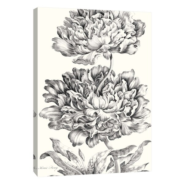 """PTM Images 9-108899 PTM Canvas Collection 10"""" x 8"""" - """"Heroic Peony"""" Giclee Flowers Art Print on Canvas"""