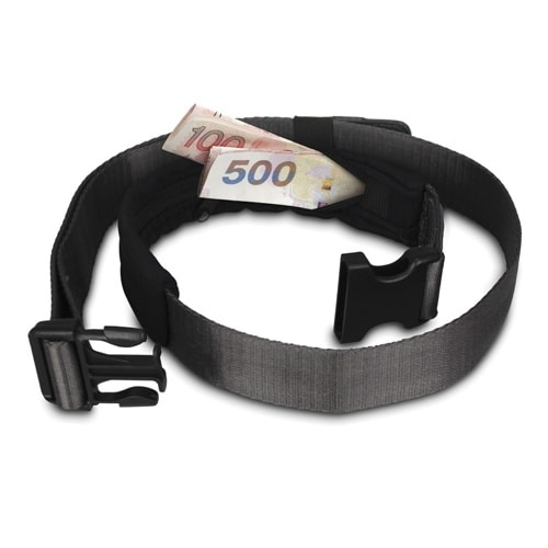 Pacsafe Cashsafe 25 Anti-Theft Deluxe Travel Belt Wallet w/ 9.4 Pocket Length