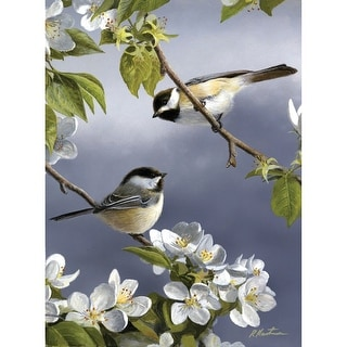 """Paint By Number Kit Artist's Collection 9""""X12""""-Spring Chicadee"""