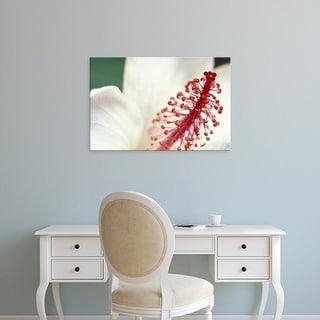 Easy Art Prints Darrell Gulin's 'Hibiscus' Premium Canvas Art