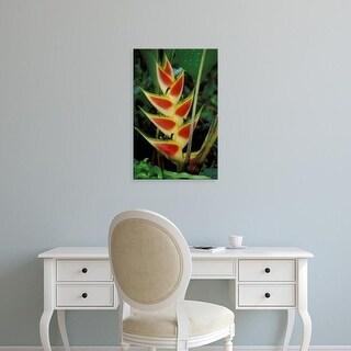 Easy Art Prints David Herbig's 'Lobster Claw' Premium Canvas Art