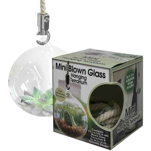 Mini Blown Glass Hanging Terrarium-