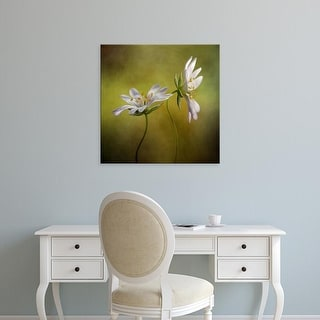 Easy Art Prints Mandy Disher's 'Echo' Premium Canvas Art