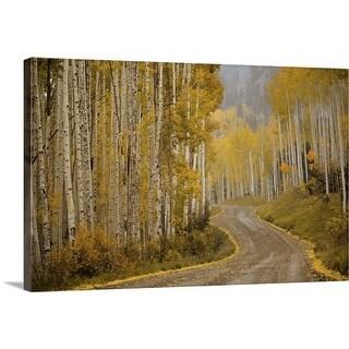 """""""Telluride, Colorado"""" Canvas Wall Art"""