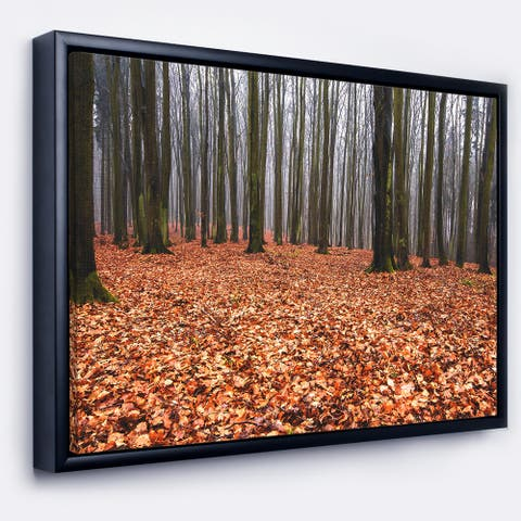 Designart 'Enchanted and Magical Fall Forest' Modern Forest Framed Canvas Art