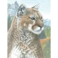 """Cougar - Color Pencil By Number Kit 8.75""""X11.75"""""""