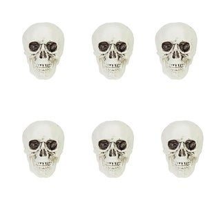 Pack of 6 White and Gray Skeleton Skull Heads Halloween Decorations 3.5""