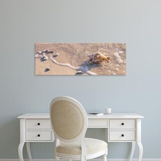 Easy Art Prints Panoramic Images's 'Conch shell on the beach, Grand Cayman, Cayman islands' Premium Canvas Art