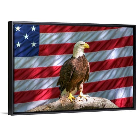 """Bald Eagle and American flag"" Black Float Frame Canvas Art"