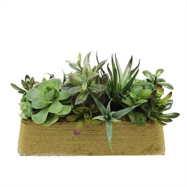 "12.5"" Artificial Mixed Green and Red Succulent Plants in a Decorative Brown Rectangular Twine Pot"