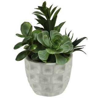 "9.5"" Artificial Mixed Spring Green Potted Succulent Plant"