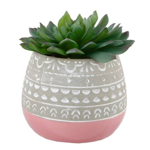 Succulent in 2 TONE Mayan CERAMIC POT,Pink - ONE-SIZE