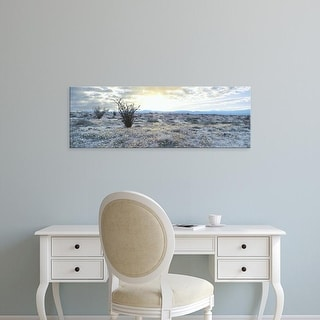 Easy Art Prints Panoramic Images's 'Brown