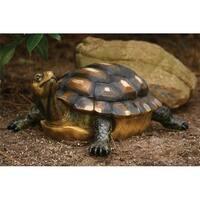 Michael Carr Designs MCD507014B Lifelike Turtle - Medium