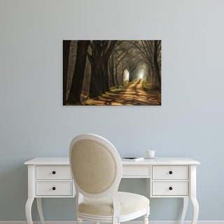 Easy Art Prints Lars Van de Goor's 'Paths' Premium Canvas Art