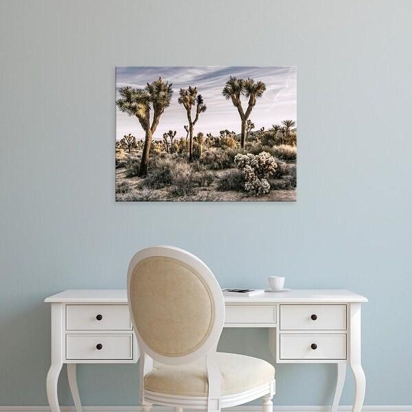Easy Art Prints Rachel Perry's 'Views of Joshua Tree IX' Premium Canvas Art