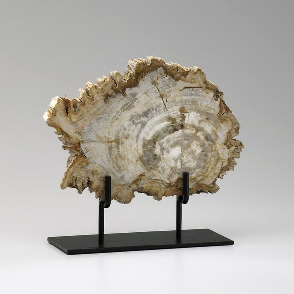 """Cyan Design 02599 12"""" Medium Petrified Wood On Stand - Oak"""