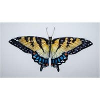 Eco Style Home esh130 Butterfly Wall Decor  Gold & Blue