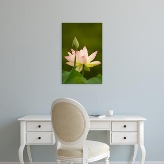 Easy Art Prints Corey Hilz's 'White Lotus With Pink Tips' Premium Canvas Art