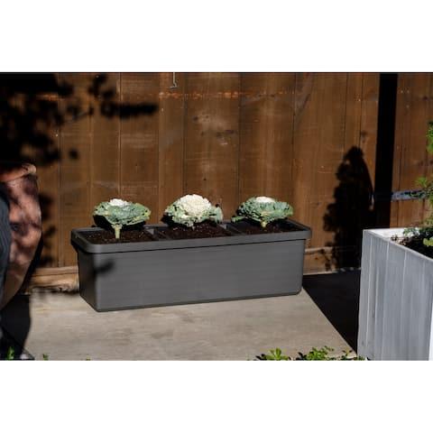 Urbalive Berberis Trio Self Watering Rectangle Planter w/wheels