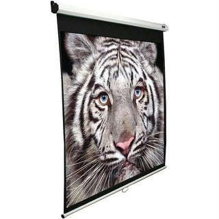 100 in. Manual B Series Projection Screen -1:1 Format; 71 in. X 71 in.