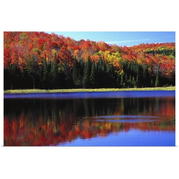 """""""Vermont Autumn, trees and water"""" Poster Print"""
