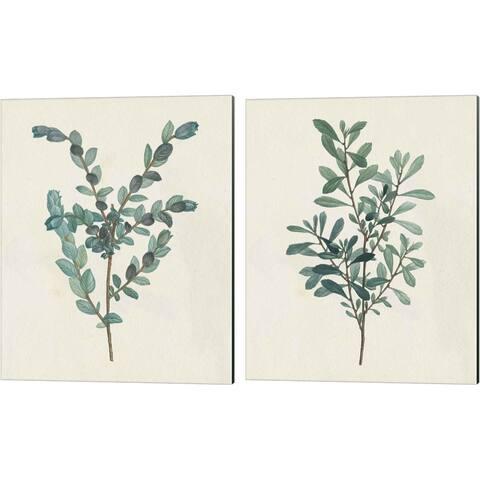 Wild Apple Portfolio 'Victorian Garden Greenery' Canvas Art (Set of 2)