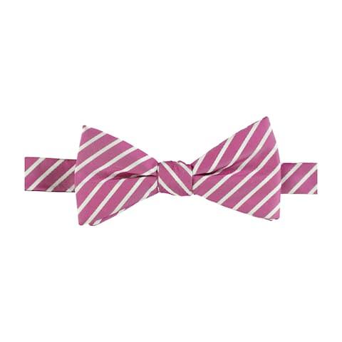 Countess Mara Mens Stripes Self-Tied Bow Tie - One Size