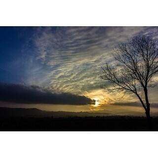 Yellow Sunset And Tree Photograph Art Print