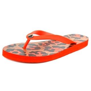 Coach Alyssa Rubber Wild Beast Open Toe Synthetic Flip Flop Sandal