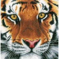 "13.75""X13.5"" 30 Count - Lanarte Tiger On Aida Counted Cross Stitch Kit"
