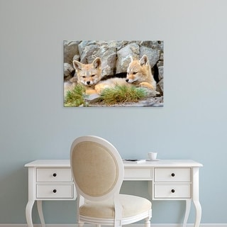 Easy Art Prints Gavriel Jecan's 'Patagonia Fox' Premium Canvas Art