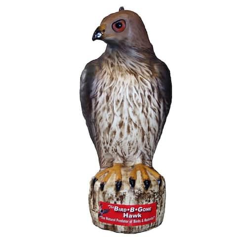 Bird-B-Gone MMRTH1 Plastic Life Like Red Hawk Decoy Bird Repellent