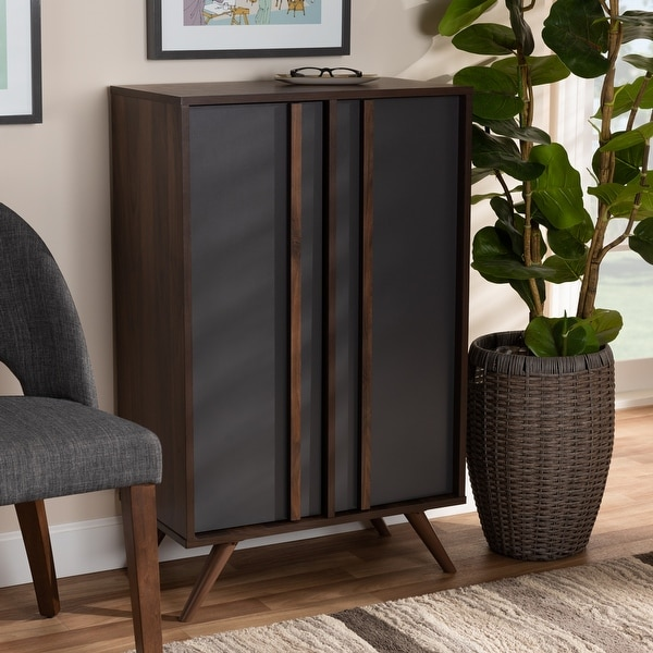 Naoki Modern and Contemporary 2-Door Shoe Cabinet. Opens flyout.
