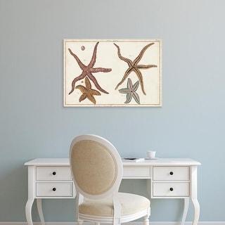 Easy Art Prints Denis Diderot's 'Starfish Naturelle III' Premium Canvas Art