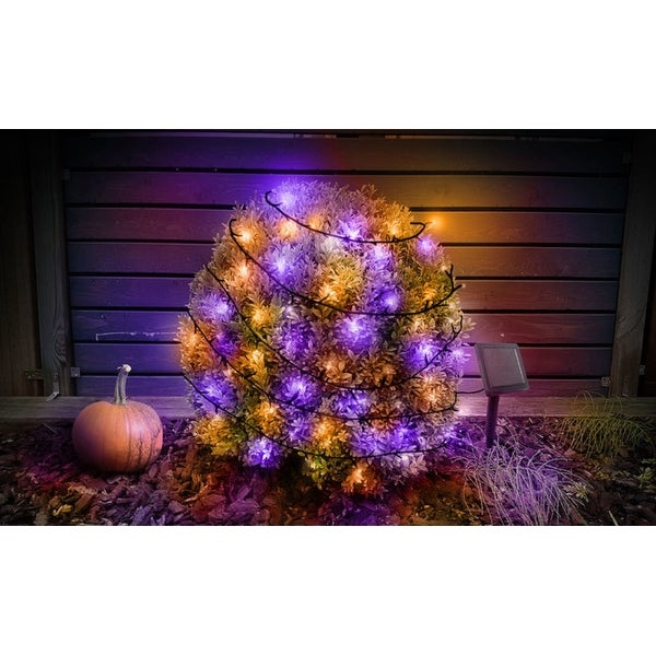 liteup125 outdoor solar 125 led string lights purple orange purple