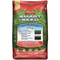 Pennington 100526636 Smart Seed Northeast Mix Grass Seed, 3 lbs