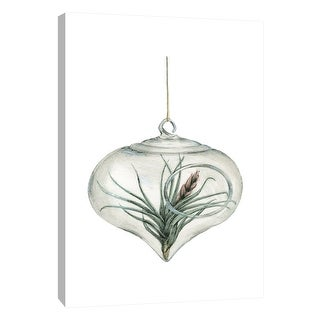 "PTM Images 9-105444  PTM Canvas Collection 10"" x 8"" - ""Air Plant 4"" Giclee Botanical Art Print on Canvas"